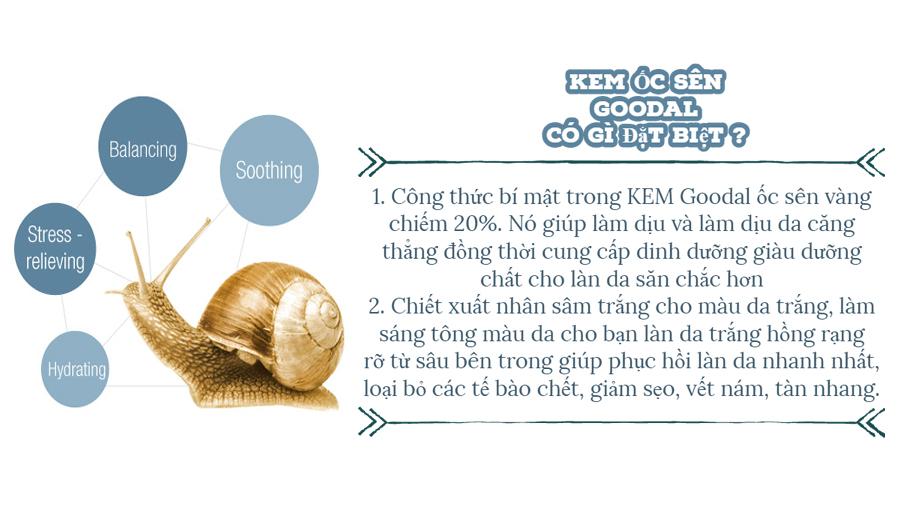 Kem Ốc Sên Hàn Quốc Goodal (2)
