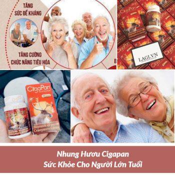 Nhung Hươu Cigapan Sức Khỏe Cho Người Lớn Tuổi